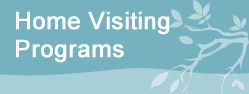 home visiting programs
